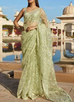 Preferable Pistachio Color Party Wear soft Net Base designer