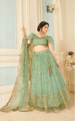 Women Sea Green base color soft net sequence work